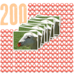 200 sheep noserings