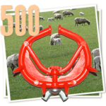 500 sheep noserings