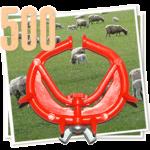500 sheep noserings
