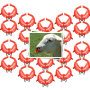 pack of 20 noserings for weaning lambs