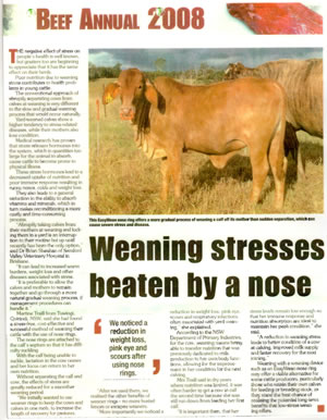Qld Country Life Beef Annual 2008