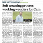 Easywean-QCL-Cam-Laurie-article